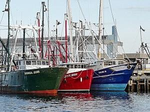 NB Fishing Boats