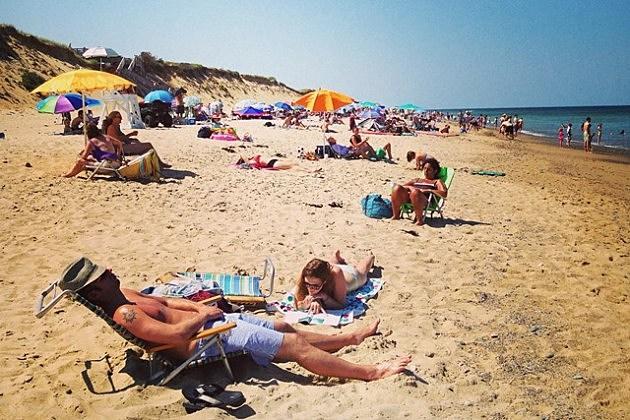 Sunbathers on Cape Cod