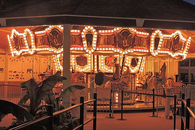 Carousel after dark
