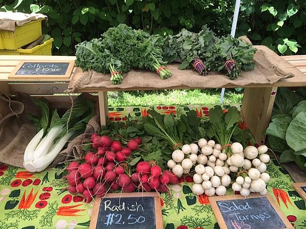 Dartmouth Farmer's Market / Facebook